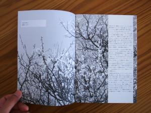 LAA_book02